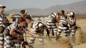 Prison laborers provide big profit