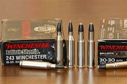 .243 Winchester is a hunter's dream