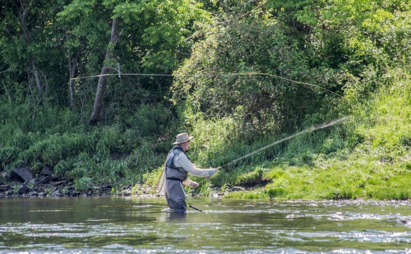 River Trout Fishing: How to Trap Trout in Rivers